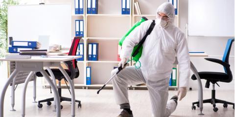 3 Ways to Ready an Office for Pest Control, Wahiawa, Hawaii