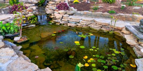 3 Reasons to Install a Pond in Your Backyard, East Bloomfield, New York