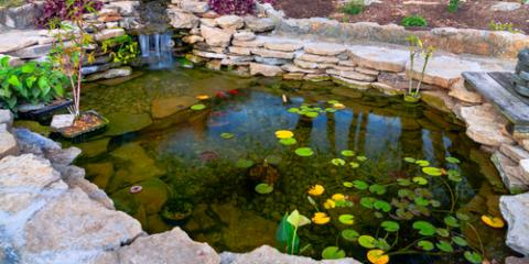 3 Ways to Prepare Your Water Garden for the Winter Months, East Bloomfield, New York