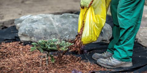 3 Reasons to Leave Mulching to the Professionals, Kettering, Ohio