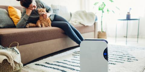 How UV Light Helps With Air Purification, ,