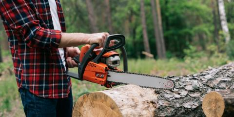 3 Dangers of DIY Tree Removal, High Point, North Carolina