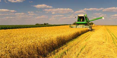 Why Crop Insurance Is a Crucial Risk-Management Tool, Beatrice, Nebraska
