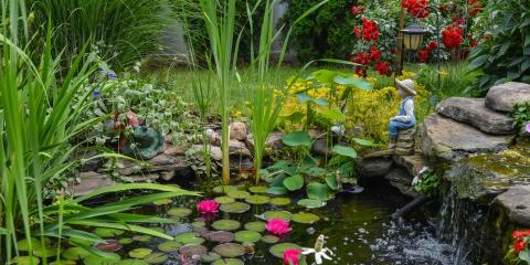 Top 5 Pond Maintenance Tips for the Fall, East Bloomfield, New York