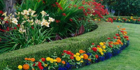 Extreme Custom Landscaping, Landscape Contractors, Services, Leesville, South Carolina