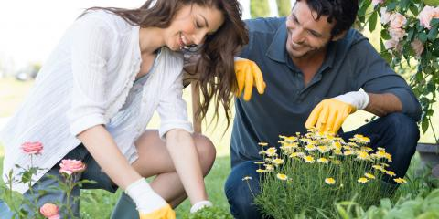 3 Tips for Landscaping Near Your Driveway, Cranston, Rhode Island