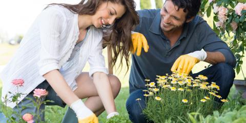 4 Spring Landscaping Tips, Beavercreek, Ohio