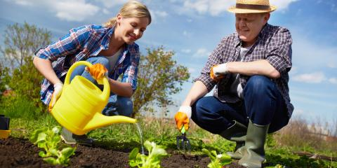 3 Landscaping Tips to Enhance Your Lawn & Garden, Canyon Lake, Texas