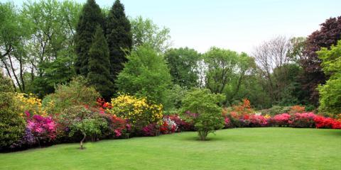 4 Ways Tree Cutting Can Keep Your Yard Beautiful, Milton, Pennsylvania