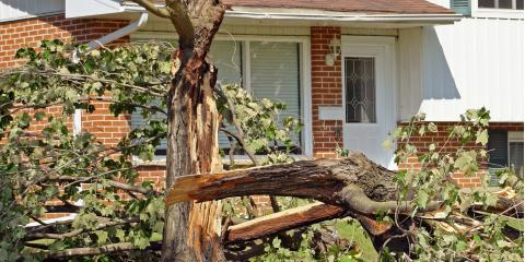 What to Do When a Storm Damages Your Home , Atmore, Alabama