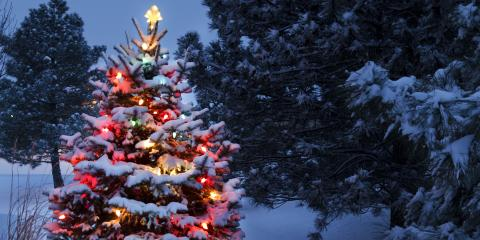 Why You Should Leave Your Outdoor Holiday Light Design to a Lighting Contractor, Weston, Massachusetts