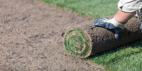 Provide The Care Your New Sod Lawn Deserves With These 4