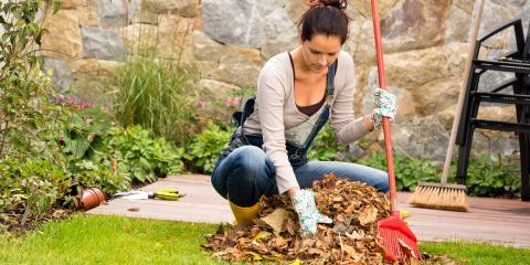 4 Pest Control Tips for Your Yard, Hilo, Hawaii