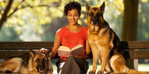 How to Find a Qualified Pet Sitter, Sunrise, Florida