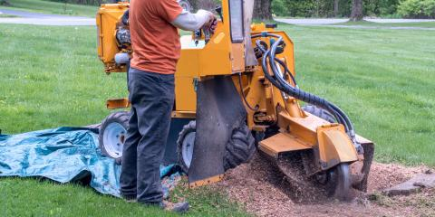 3 Benefits of Stump Grinding, Miamitown, Ohio