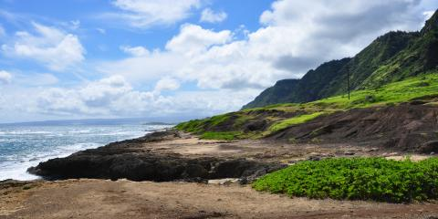 3 Etiquette Tips for Taking a Nature Tour in Hawai'i, Waialua, Hawaii