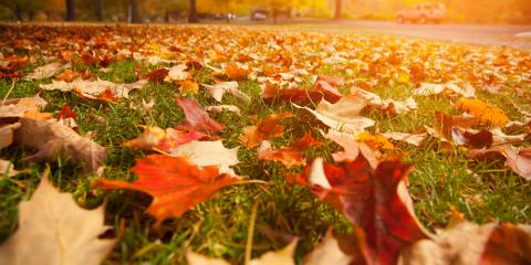 3 Essential Fall Lawn Care Tips, Cromwell, Connecticut