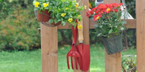 5 Easy Fall Gardening Tips, Colerain, Ohio