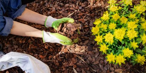 How Does Mulch Improve Your Garden Beds? , Burlington, Kentucky