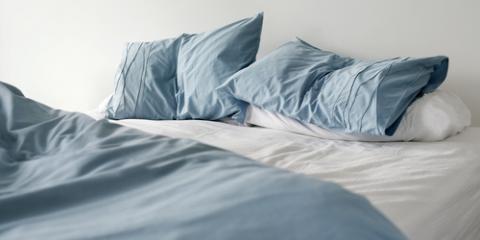 What Bedbug Heat Treatment Entails, Lexington-Fayette, Kentucky