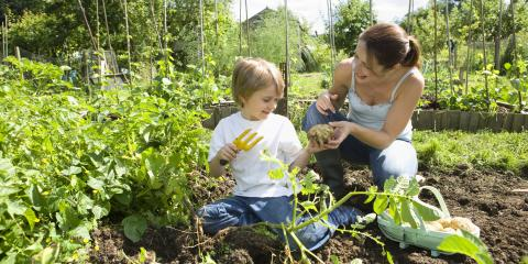 Why It's Smart to Till the Garden Before Winter, St. Peters, Missouri