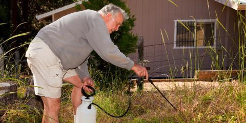 Why You Need to Start Weed Control Now, Lake Havasu City, Arizona