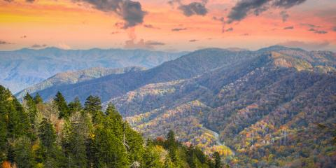Renting a Pet-Friendly Cabin in the Smoky Mountains? Try These Activities!, Gatlinburg, Tennessee