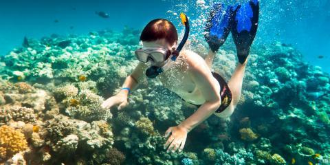 What to Know About Interacting With Marine Life, Kekaha-Waimea, Hawaii