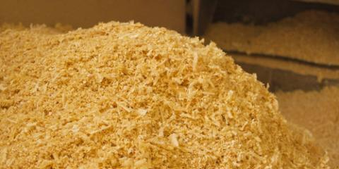 3 Important Facts About Using Sawdust as Horse Bedding, Hallandale Beach, Florida