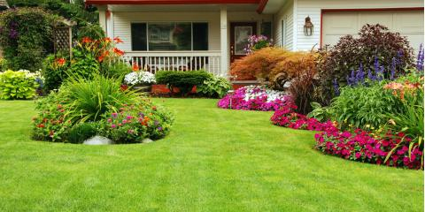 Guide to Reviving Your Landscape This Spring, Delhi, Ohio