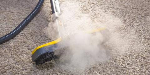 Carpet Cleaners List Some of the Types of Bacteria Found in Your Carpet, Southeast Guadalupe, Texas