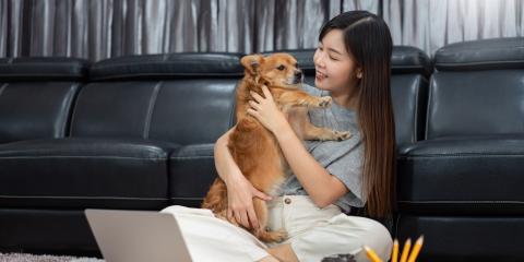 3 Reasons to Get a Pet During the COVID-19 Pandemic, Ewa, Hawaii