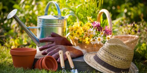 Tips for Gardening With Chronic Back Pain, Coon Rapids, Minnesota