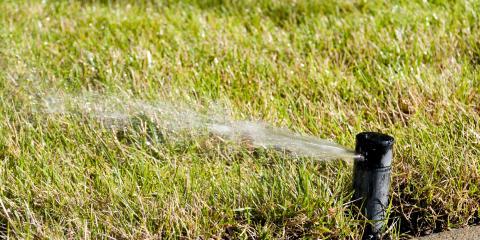 A Useful Guide to Fall Lawn Care, Chalco, Nebraska