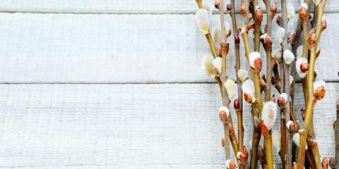 Find the Perfect Easter Décor at Crate & Barrel, Tysons Corner, Virginia