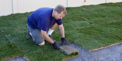 Why Law Service Experts Recommend Sod, Lincoln, Nebraska