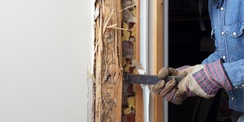 4 Signs of Termite Infestations, Bolivar, Missouri