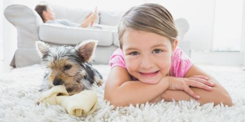 3 Ways to Keep Your Carpets Looking Great , Lexington-Fayette, Kentucky