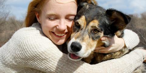 3 Winter Pet Care Tips for Dog Owners, Lincoln, Nebraska
