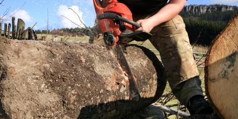 Estate Maintenance Contractors, Tree Service, Services, Highland, Arkansas