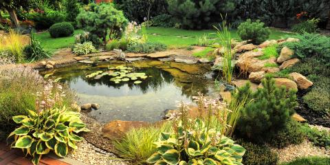 4 Design Tips for a Backyard Pond, East Bloomfield, New York