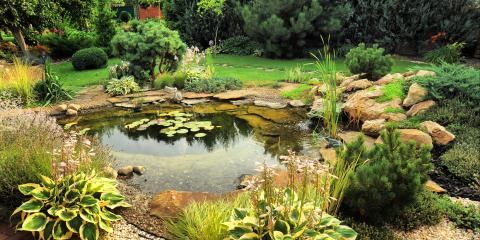 3 Popular Landscaping Trends in 2020, Asheboro, North Carolina