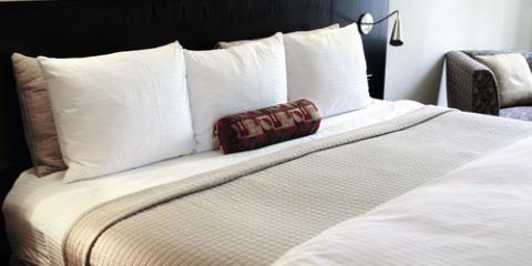 3 Bedbug Prevention Tips for Travelers , White Oak, Ohio