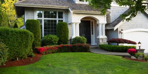 3 Tips to Keep Your Lawn Pest-Free, Berrett, Maryland