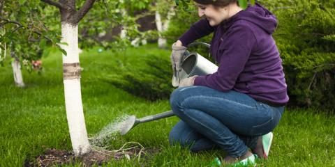 3 Reasons Why Your Garden Center & Nursery Recommends Keeping Trees & Shrubs Hydrated, Plymouth, Minnesota