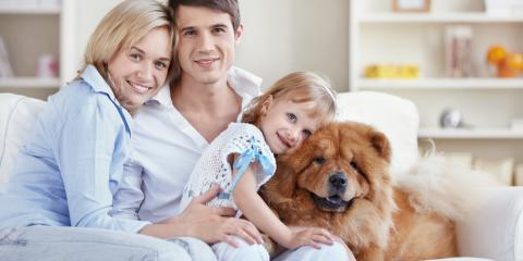 3 HVAC Care Tips for Pet Owners, Port Aransas, Texas