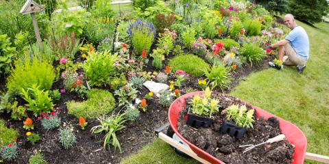 4 Qualities to Look for in a Professional Landscaper, Scottsville, New York