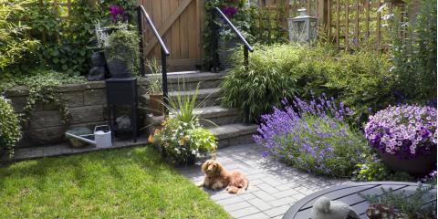 4 Landscape Design Ideas for Your Small Garden, Waikane, Hawaii