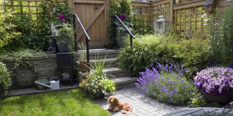Need a Dog Fence? Your Guide to Materials & Benefits, Columbia, Missouri