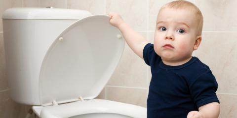 How to Childproof Toilets, Farmington, Minnesota
